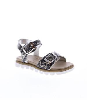 EB Shoes Kinderschoenen 0204 03 grijs
